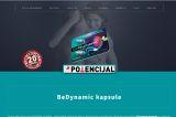 Izrada web sajta za Dynamic Kapsule